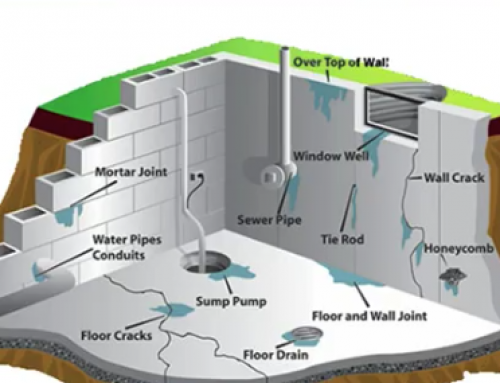 What to Expect from a Basement Waterproofing Services?